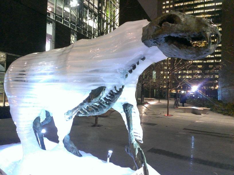 Montréal- Ours polaire sur glaces éphémères 2