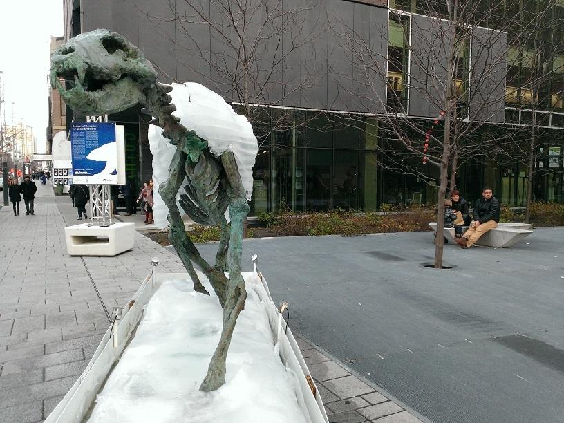 Montréal- Ours polaire sur glaces éphémères 4