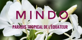 equateur-mindo-orchidees-cover