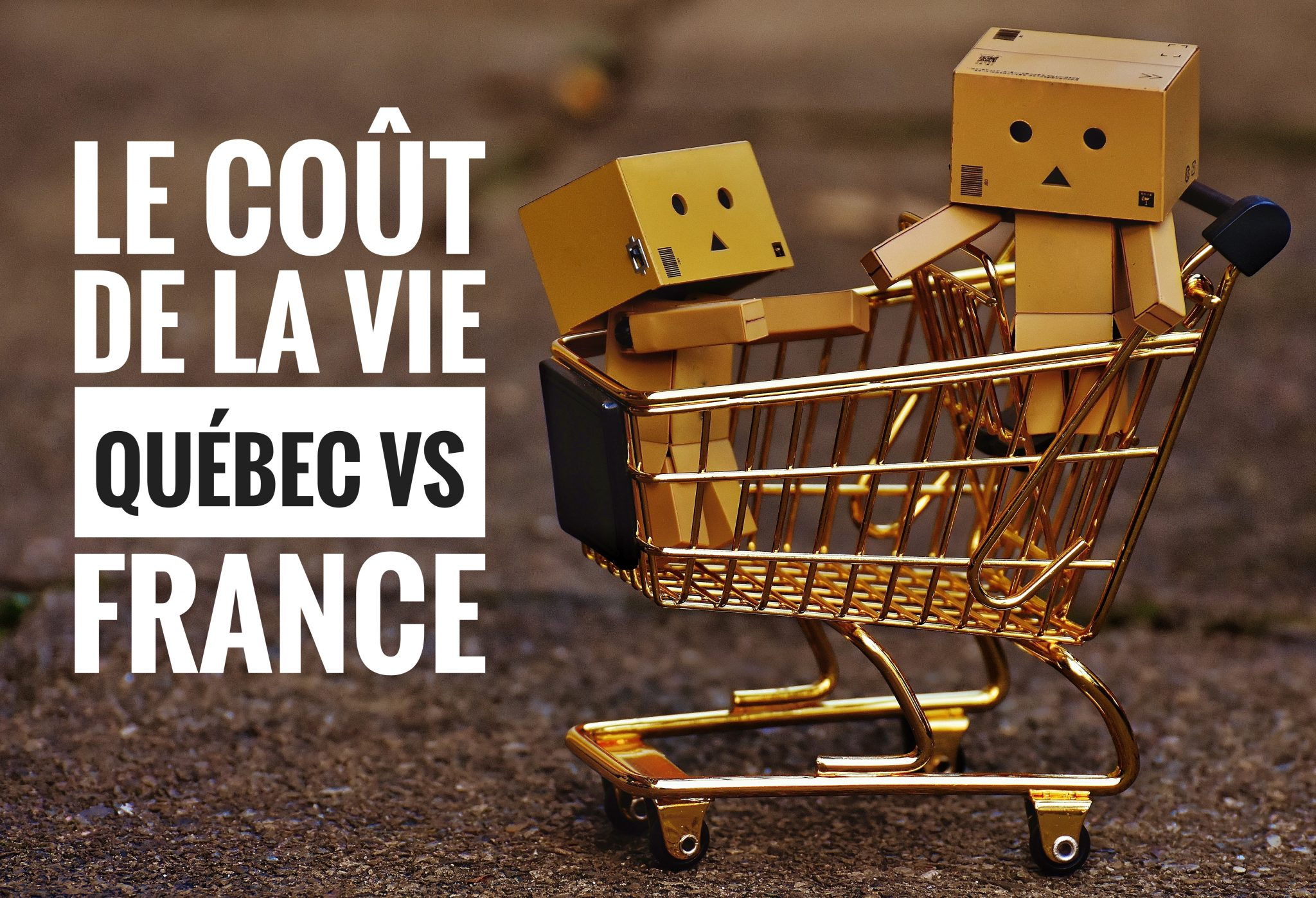 le co u00fbt de la vie   qu u00e9bec vs france