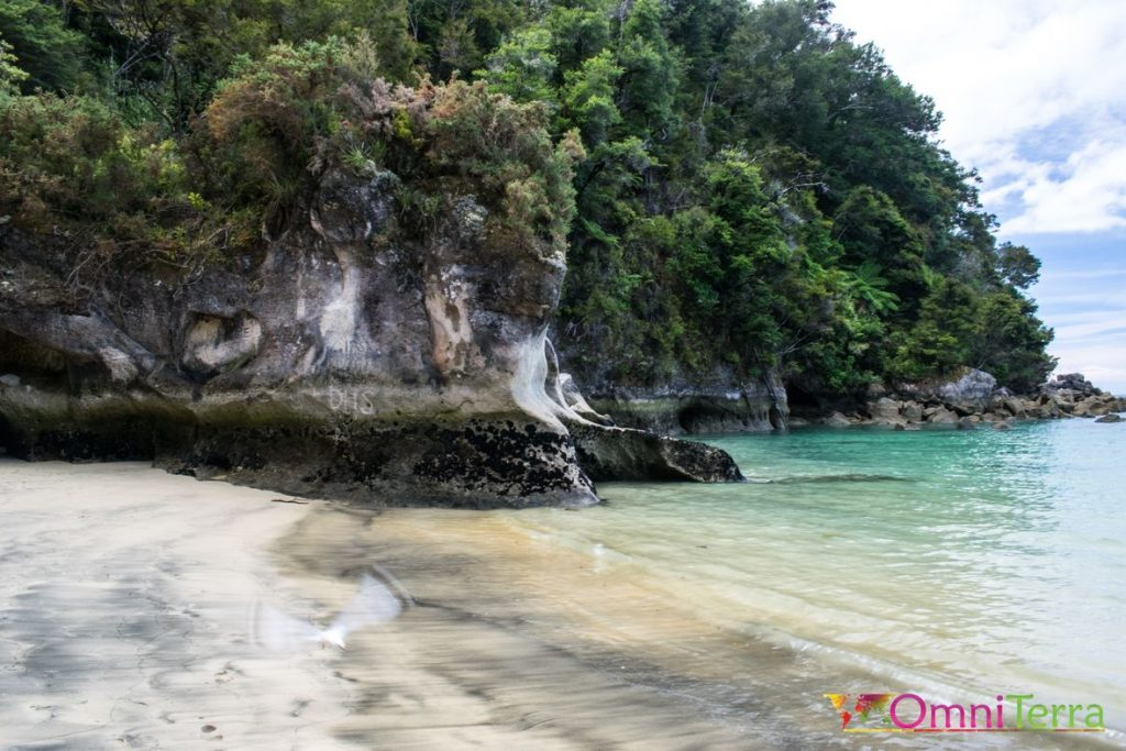 Nouvelle Zelande - Parc Abel tasman 3